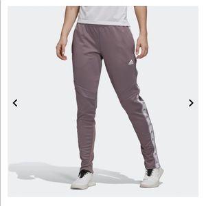 Adidas Tiro 19 Training Pants in Legacy Purple